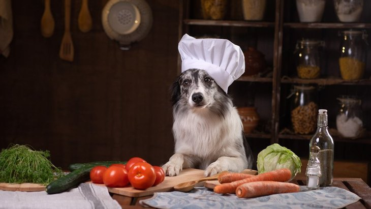犬に与えないほうがいい『消化に悪い野菜』4選