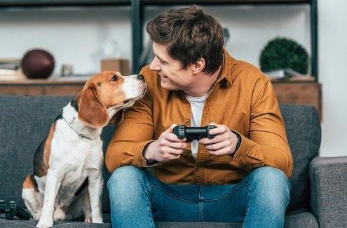 意外なことも?犬と人間の共通点3つ