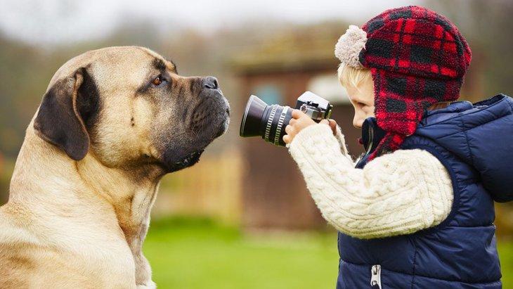 犬は写真を撮られているのを理解してる?
