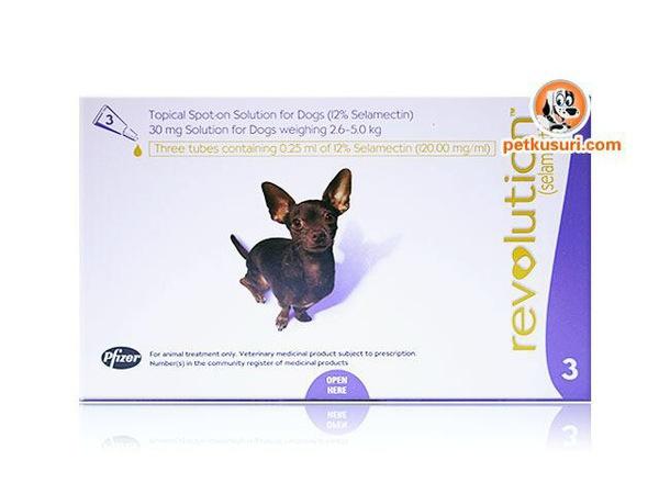 犬のフィラリアの症状と治療法と予防対策
