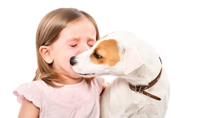 なるべく減らしたい!犬が『人に気を遣う瞬間』6つ