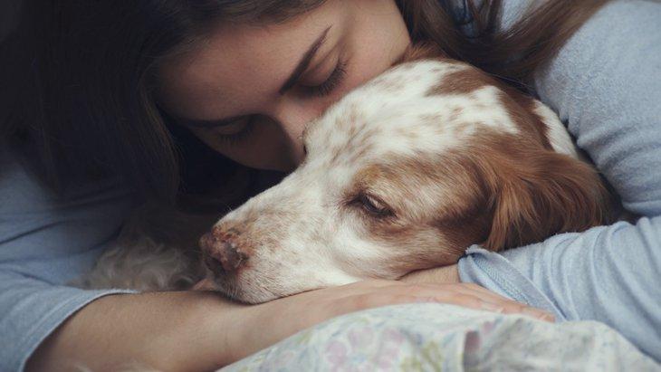 犬によるノイローゼの症状5選!どうやって克服すればいいの?