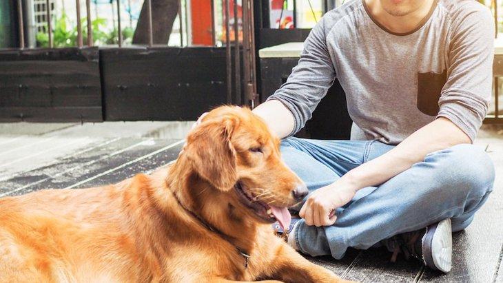 男性と女性、犬により好かれやすいのはどっち?なぜ?【研究結果】