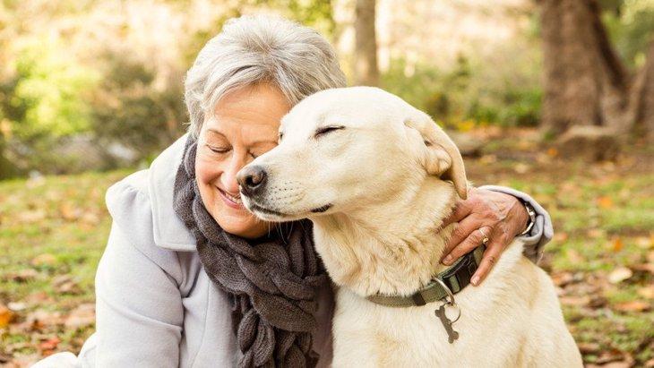 犬の14歳は人間に例えると72歳以上!シニア犬のために気をつけたいこと