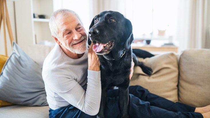 犬を飼うと『死亡リスクが低下』する?その5つの理由とは