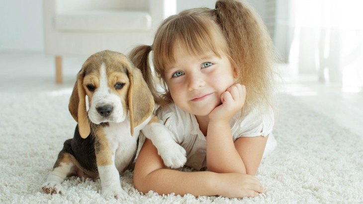 子どものいる家庭で犬を飼うときの絶対NG行為4つ