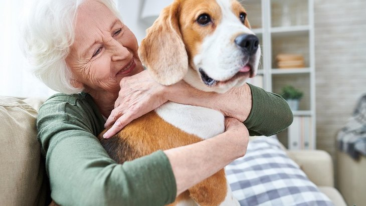 高齢者が犬の散歩をする時の注意点3つ