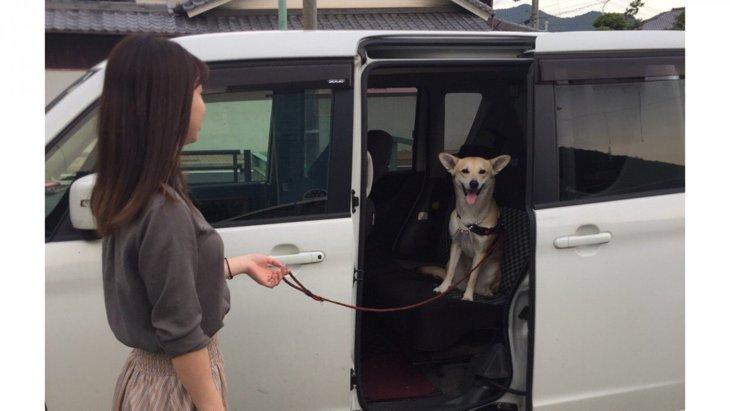 「病院には入らないよ!」最高の笑顔で拒否し続ける犬さんが話題
