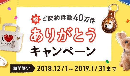 【締め切り間近】豪華Wキャンペーン!1月31日まで!