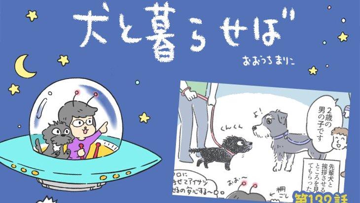犬と暮らせば【第132話】「降参!!」