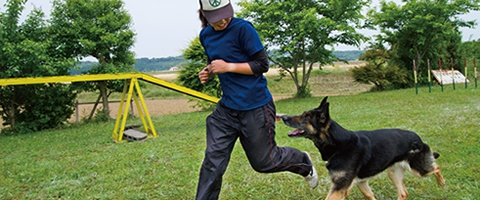 「警察犬訓練士」の仕事内容と資格を取るには?向いてる人の素質