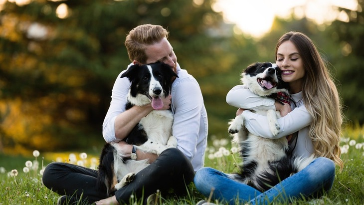 「愛情を受けている犬」と「愛情不足な犬」の違い