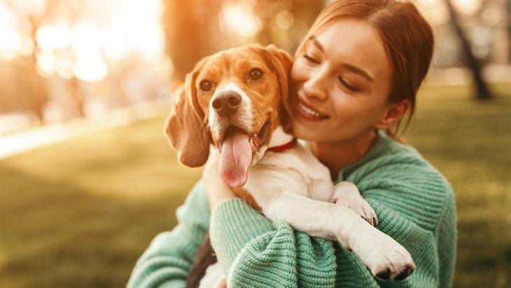 犬を危険にさらしてしまう超危険なNG行為3選