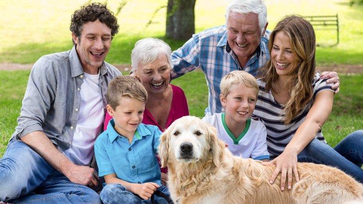 人と犬が本当の家族になれるまで。