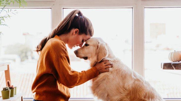 犬があなたに伝えたいと思っている『言葉』5選