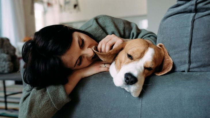 犬が急に素っ気なくなる心理4つ!もしかして、嫌われてしまったの?