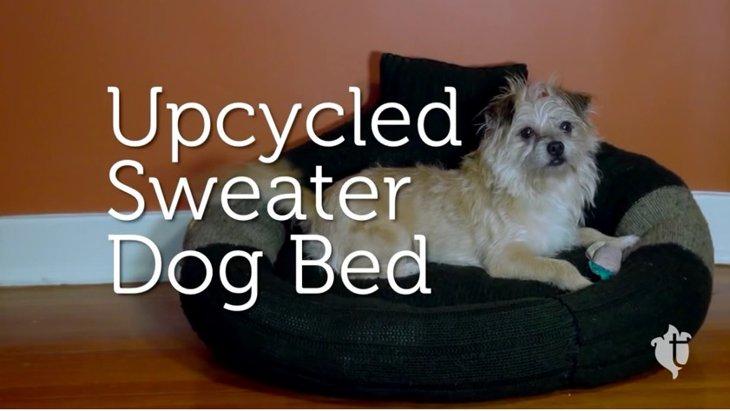 あなたのもう着なくなったセーターで、犬用ベッドを作ってみませんか?
