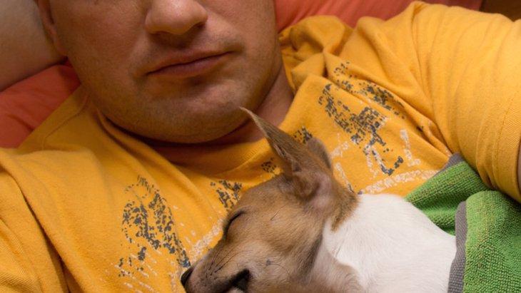 犬との睡眠が慢性的な痛みを持つ人を助ける可能性【研究結果】