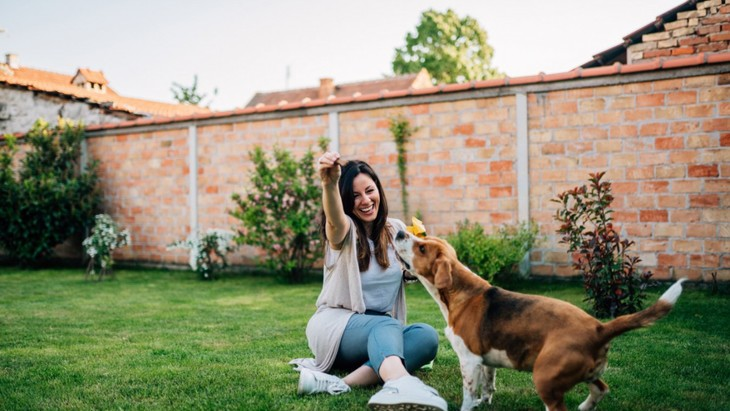 愛犬と遊ぶときに飼い主がやってはいけない『絶対NG行為』5選