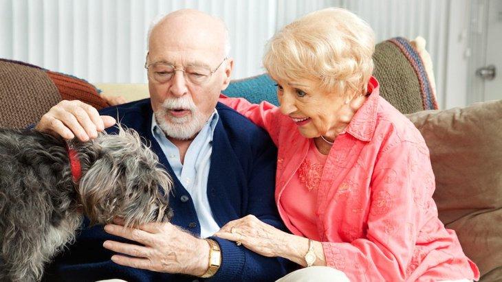 老人ホームを訪れるセラピー犬、AIBOでも同様の効果があると言う研究結果