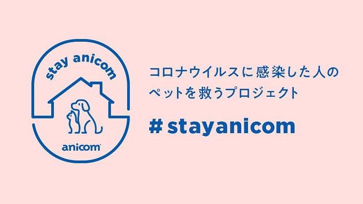新型コロナ感染者の愛犬を守るアニコム『#StayAnicom』プロジェクト始動!