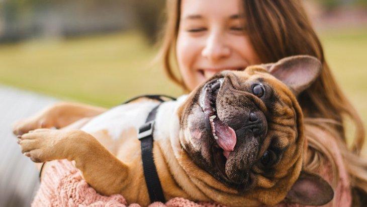 犬友から尊敬される飼い主がしている5つのこと