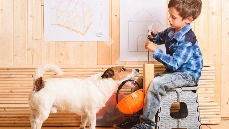 こんな簡単に!?犬の『ハウスを可愛くする簡単DIY』3選!
