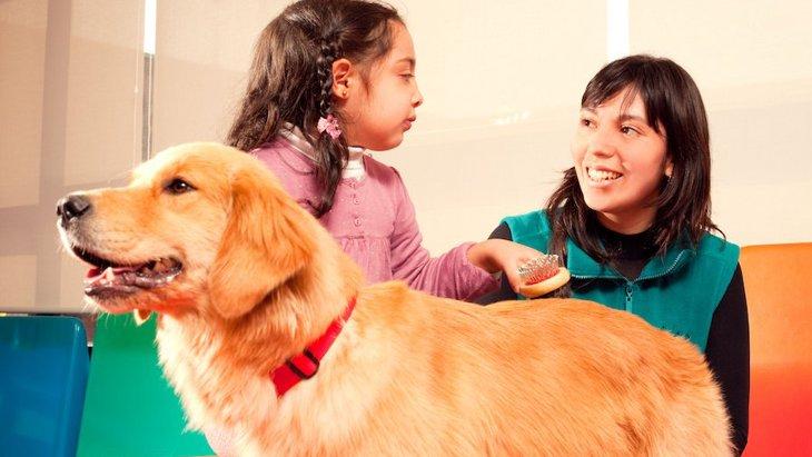 セラピードッグは子供が楽しみながら学ぶのに効果的というリサーチ結果