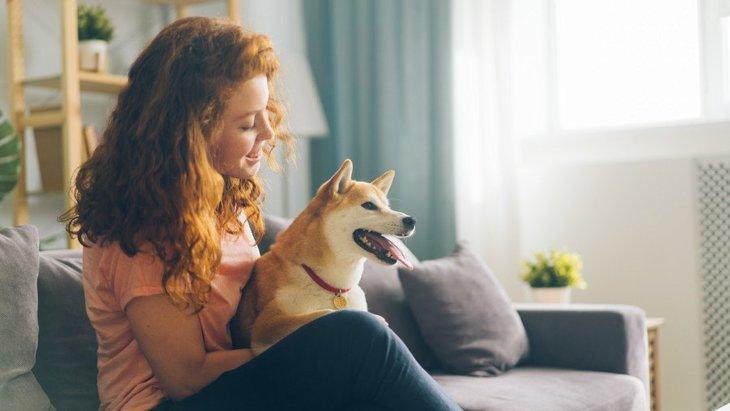 犬にとっての飼い主は『恋人』なの?どんな感情を抱いてる?