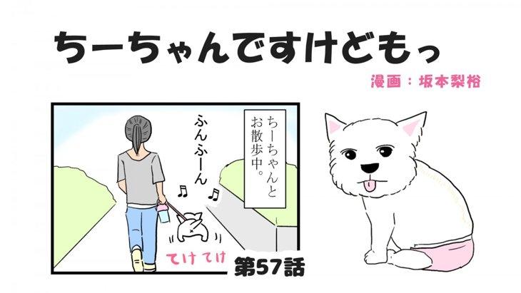 ちーちゃんですけどもっ【第57話】「犬の嗅覚は信用できる」