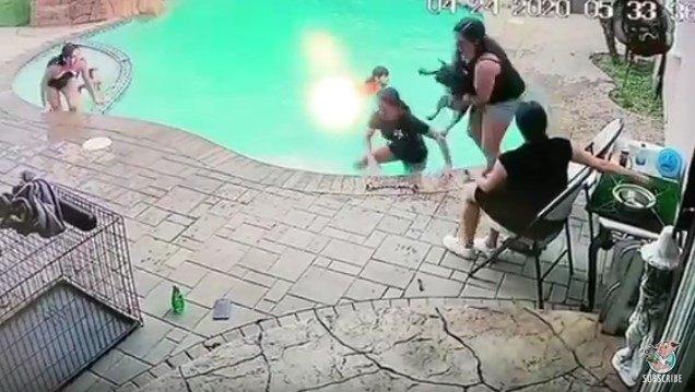 足を踏み外して犬がプールにドボーン!すかさず女性が反応し無事救出!
