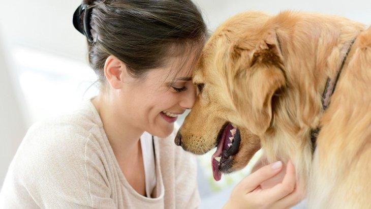 あなたの愛犬はする?『甘えん坊な犬』がする仕草6選
