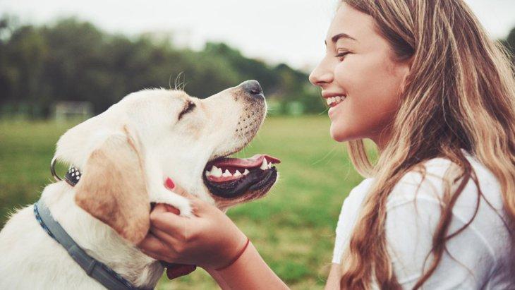 これを意識して!犬から愛される人がしている5つの行動