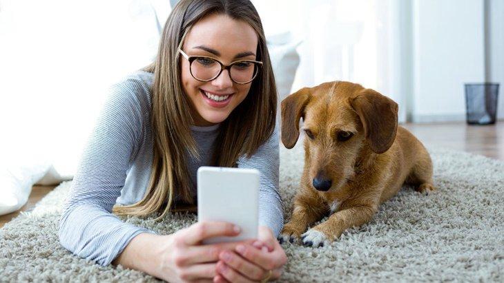 犬が『やきもち』を妬いてしまう『飼い主の意外な行動』4選!どうやってケアすればいいの?