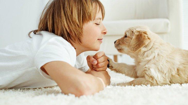 大好きな愛犬と『今以上にもっと仲良くなる』方法6選