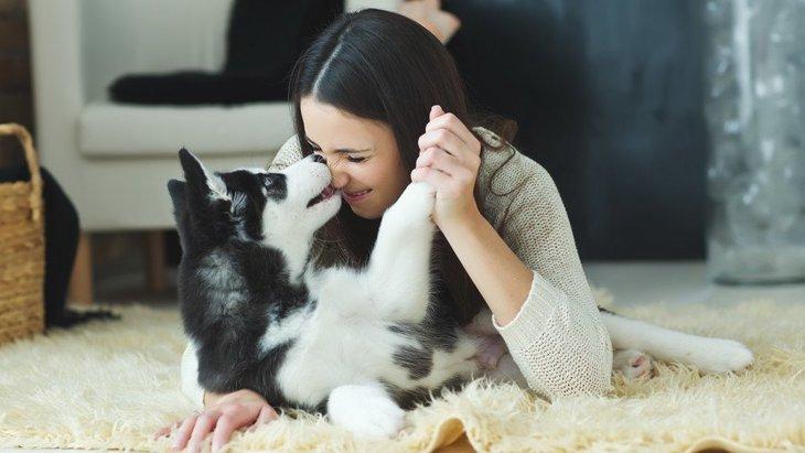 犬は落ち込んでいる人が分かる?犬が泣いている人を慰めてくれる理由