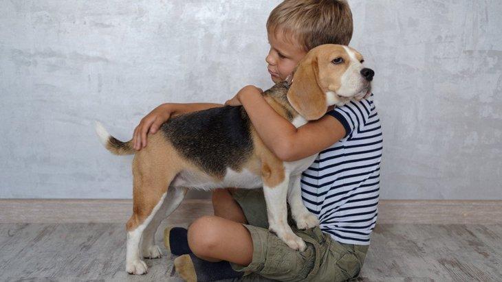 犬と飼い主の間に『友情』が生まれている時にしている仕草4選