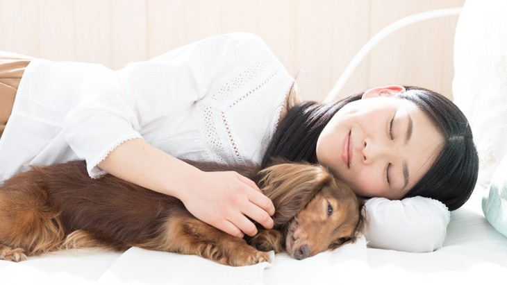 可愛すぎる♡犬が飼い主に添い寝してくる心理5選