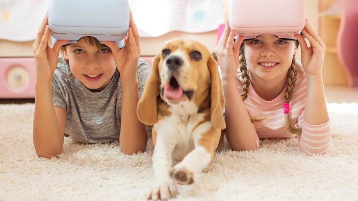 バーチャル・リアリティで犬の咬傷事故防止のための体験教育が可能に!
