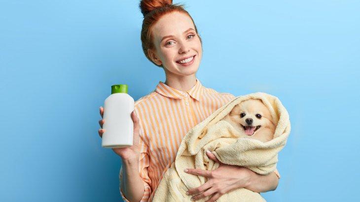 犬のフケ対策おすすめシャンプー3選!選び方・ケア方法などを解説