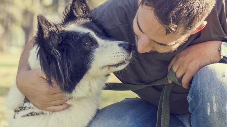 犬から香ばしい匂いがする理由とは?