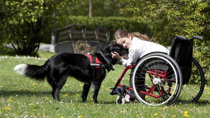 補助犬について 身体に障害のある人を支える介助犬、盲導犬、聴導犬の3種類とは