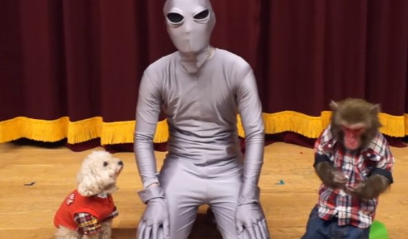 ドッキリ!?宇宙人になって愛犬達の前に現れてみた