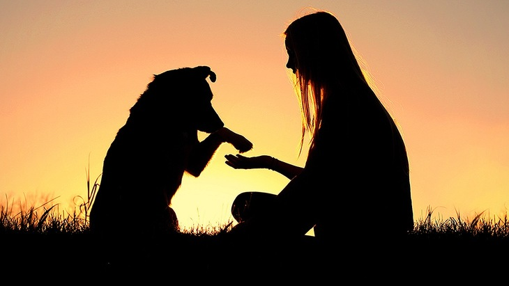 愛犬が教えてくれる大切な7つのこと