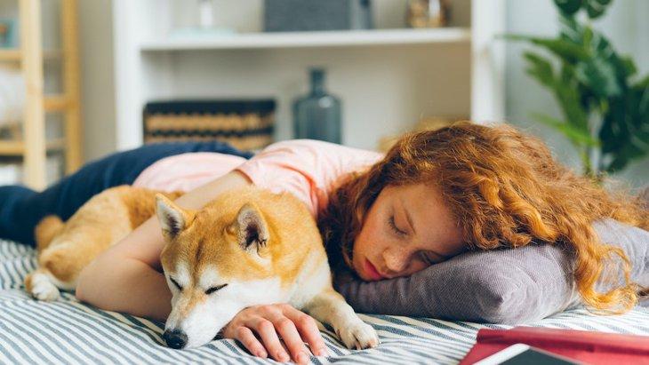 犬に愛されていると実感する瞬間5選