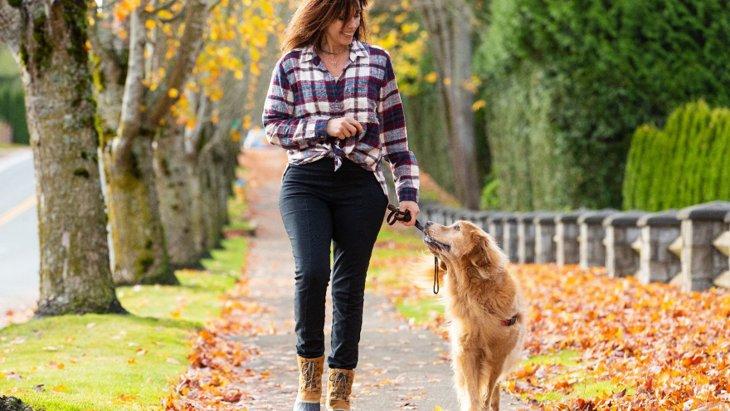 犬の脳を刺激する『散歩の仕方』5選!マンネリ化させないための工夫とは