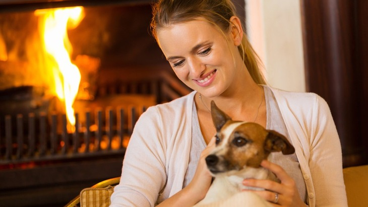 犬にも「冷え症」がある?肉球が冷たくなる原因と改善策