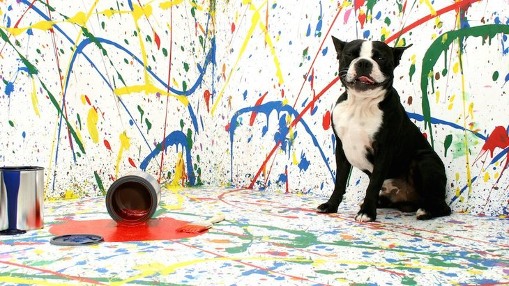 犬のアートが満載!NYにオープンしたAKCドッグミュージアム
