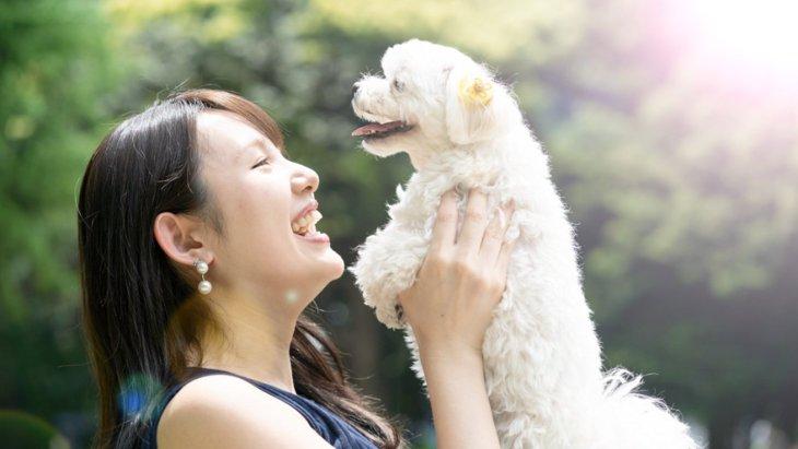 『犬を愛しすぎている飼い主』が持つ共通点5選