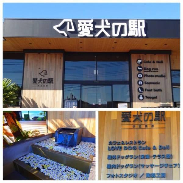 伊豆高原「愛犬の駅」 伊豆旅行には外せないおすすめスポット